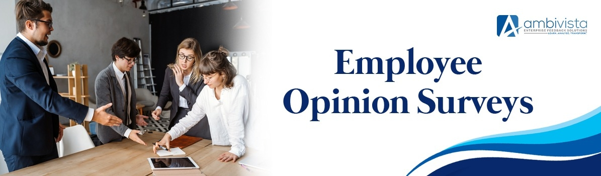 Choose Ambivista Employee Opinion Surveys to Cover Insights From Your Employees